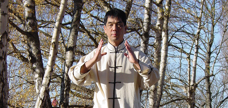 Tai Chi with Anthony Lee Hem